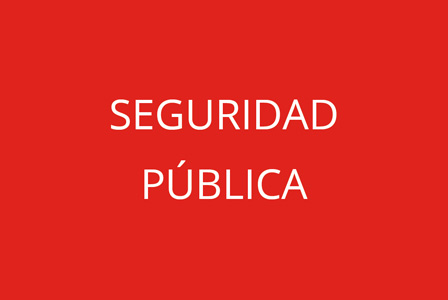 Seguridad pública