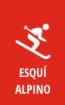 tecnicos-deportivos-esqui-alpino-icono-10